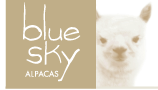 Blue Sky Alpacas Yarns at For Yarn