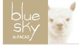 Blue Sky Alpacas Yarns at For Yarn